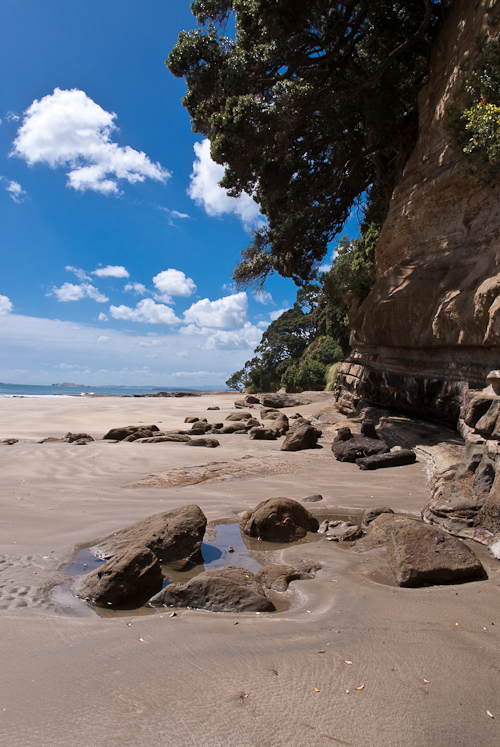 Cliffs at Takapuna Beach