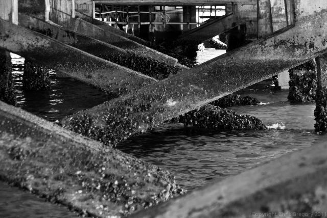 Devonport Wharf, Auckland, New Zealand, Copyright Chris Gregory 2011