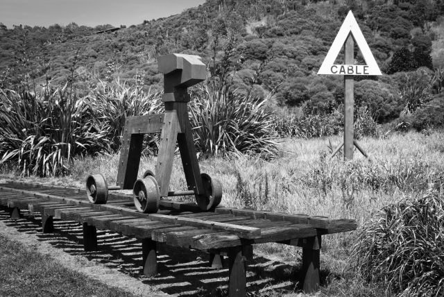 Trolley Dog, Cable Bay, Waiheke Island, Auckland, New Zealand, Copyright Chris Gregory 2011