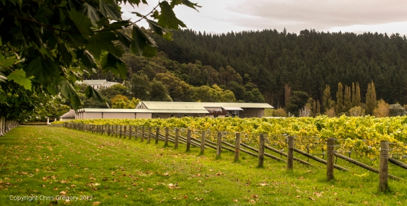 Winery, Mission Estate, Hawkes Bay, New Zealand, Copyright Chris Gregory 2012
