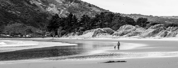 Aramoana Beach, Otago, New Zealand, Copyright Chris Gregory 2012