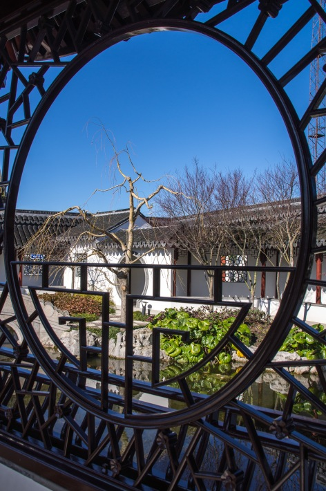 Framed, Chinese Garden, Dunedin, Otago, New Zealand, Copyright Chris Gregory 2012