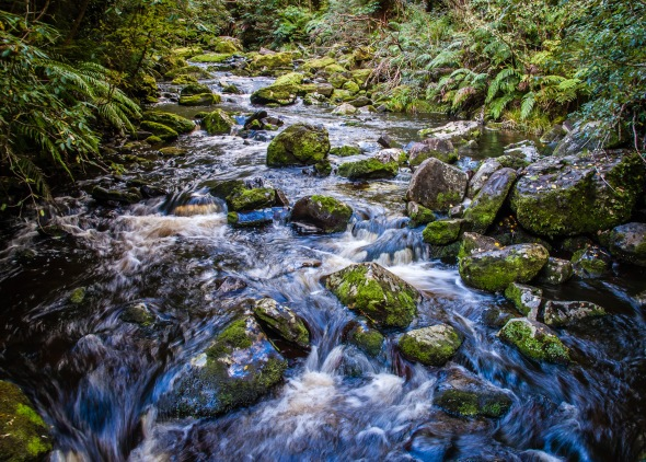 Tautuku River, Catlins Forest Park, Southland, New Zealand, Copyright Chris Gregory 2012