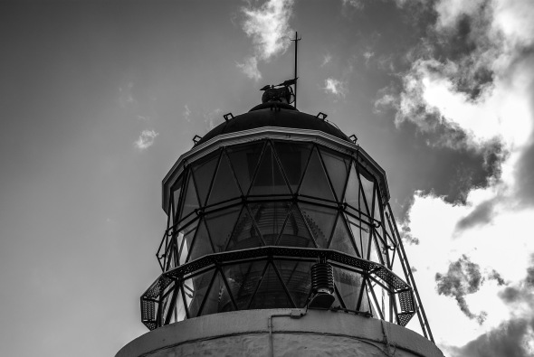 Nugget Point Light, Catlins, Southland, New Zealand, Copyright Chris Gregory 2010
