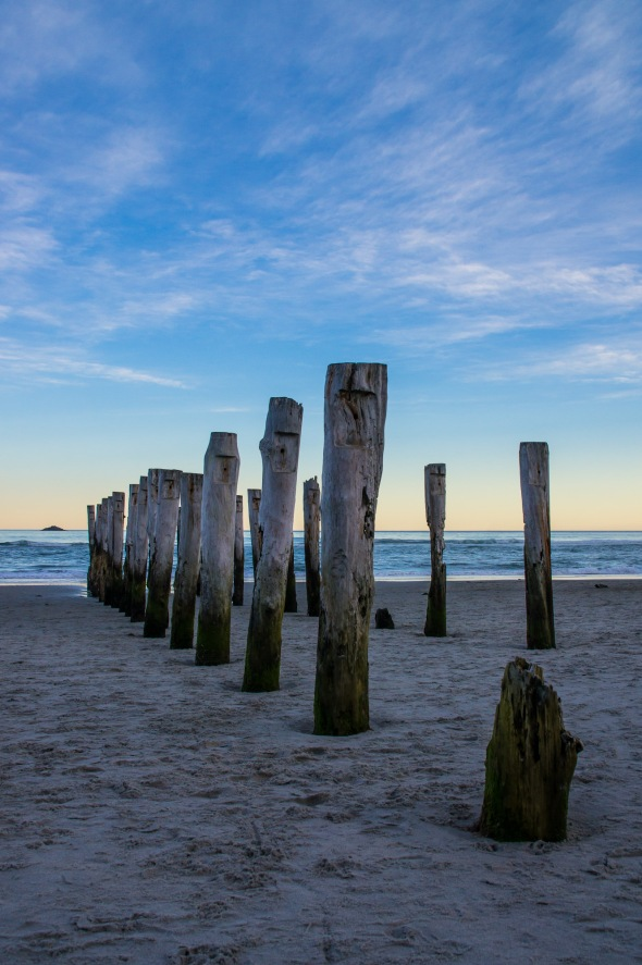 Poles, St Clair Beach, Dunedin, Otago, New Zealand, Copyright Chris Gregory 2012