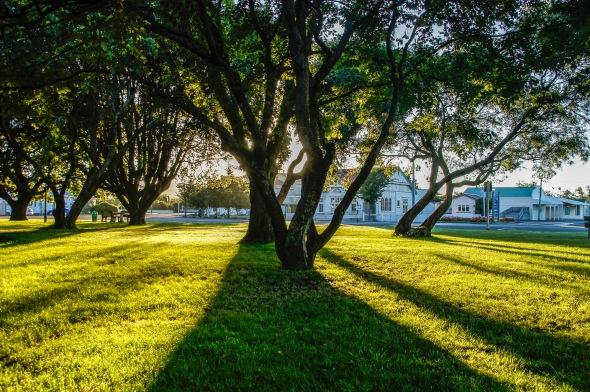 Silhouette, Martinborough, Wairarapa, New Zealand, Copyright Chris Gregory 2012