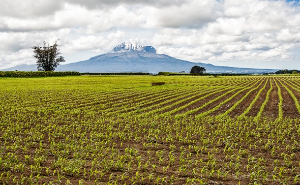 Shining Mountain, Taranaki, Mt Egmont, New Zealand, Copyright Chris Gregory 2012