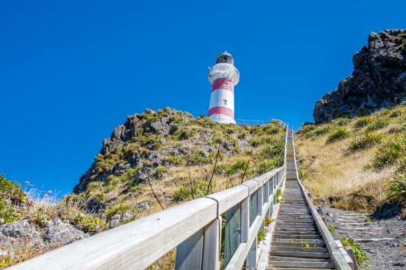 Cape Palliser, Wairarapa, New Zealand, Copyright Chris Gregory 2012