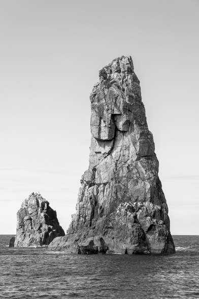Needles, Great Barrier Island, New Zealand, Copyright Chris Gregory 2013