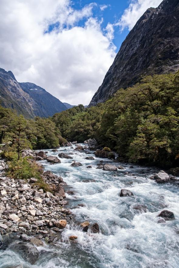 Hollyford River, Fiordland, New Zealand, Copyright Chris Gregory 2013