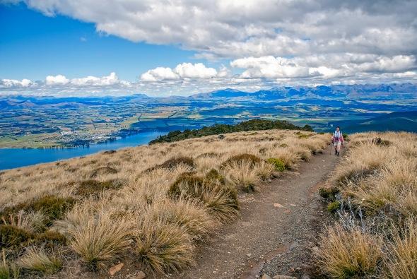 Alpine Grasslands, Kepler Track, Lake Te Anau, Otago, New Zealand, Copyright Chris Gregory 2013